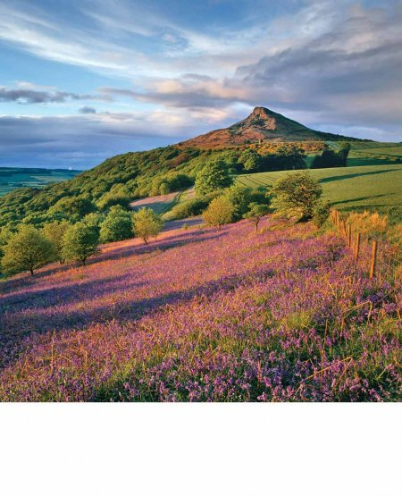 Cloud and shadow, spring evening, Roseberry Topping  North York Moors