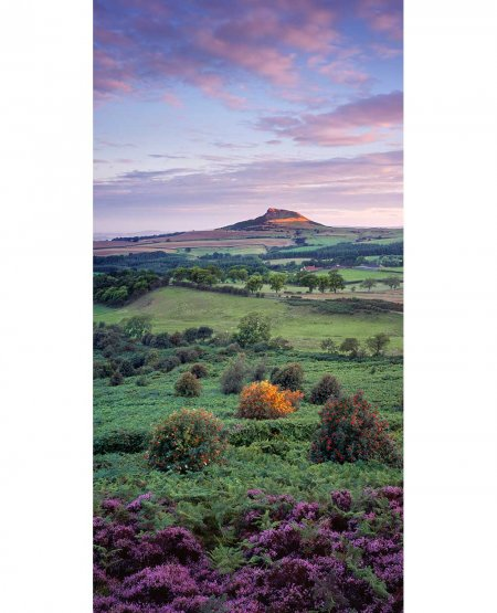 Roseberry Topping, summer dawn