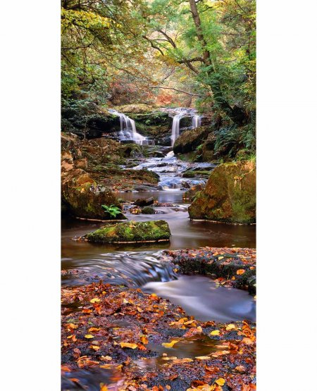 Upper Thomason Foss  North York Moors