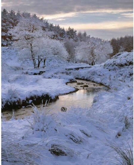 Cod Beck, winter