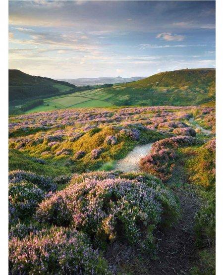 High Moor path, Bilsdale