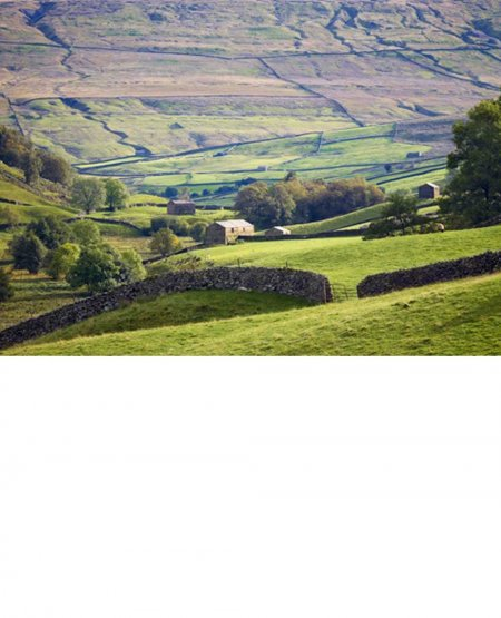Swaledale below Angram