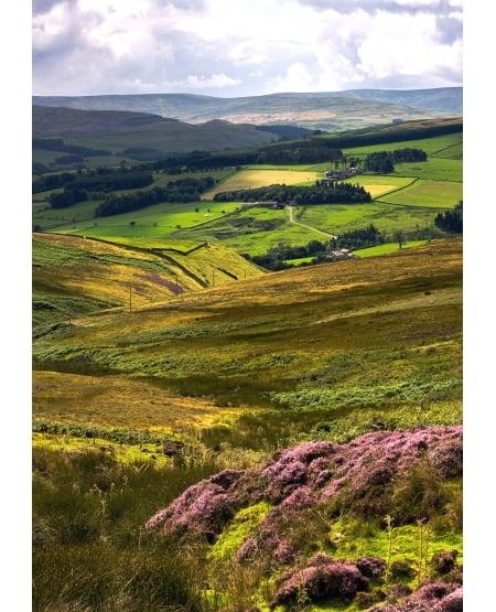 Overlooking Weardale, near Stanhope