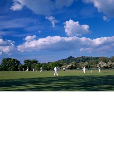 Cricket match, early summer