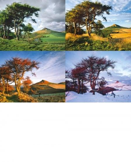 Four seasons, Roseberry Topping