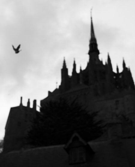 Mont Saint Michel Abbey with Birds