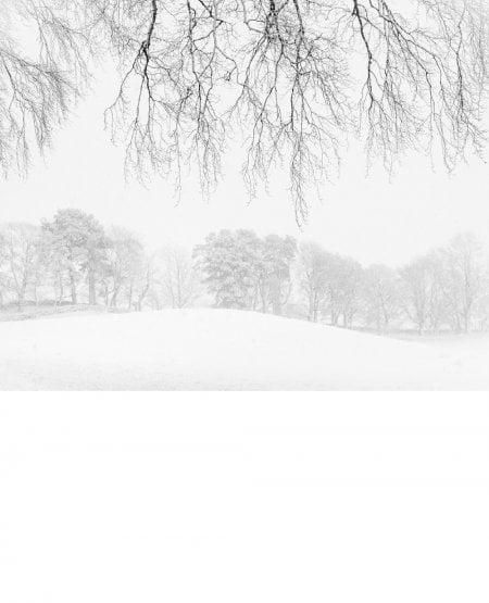 Snowlines, Lanarkshire