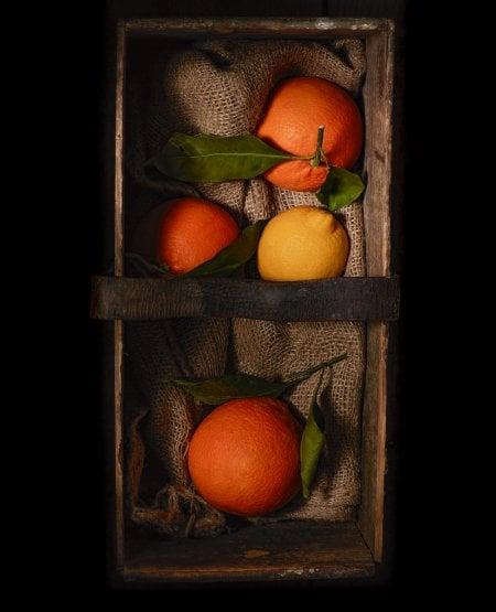 Dark Box- Citrus Fruit
