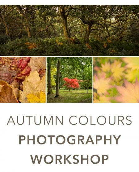 Autumn Colours - November 2019 Workshop with Mark Banks