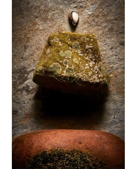 Pebble Rock and Sandstone Boulder with Lichen