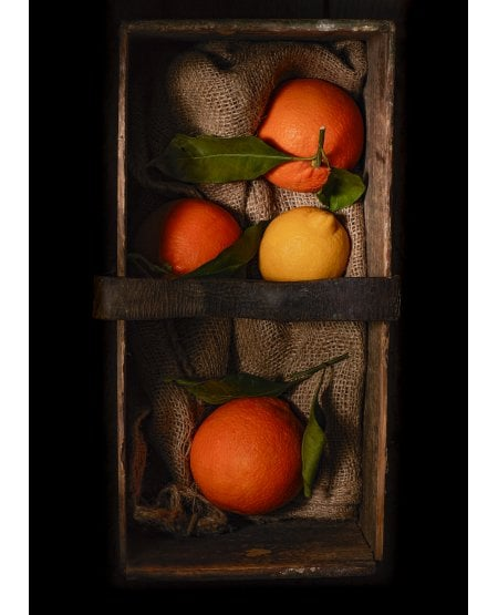 Oranges and a Lemon in an old wooden crate
