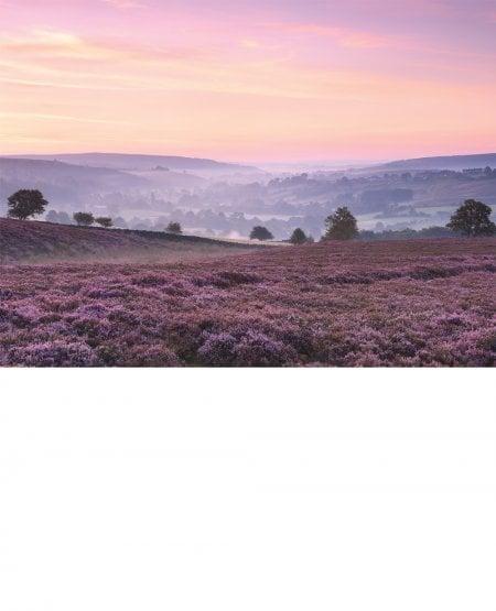 Castleton & Eskdale, misty dawn