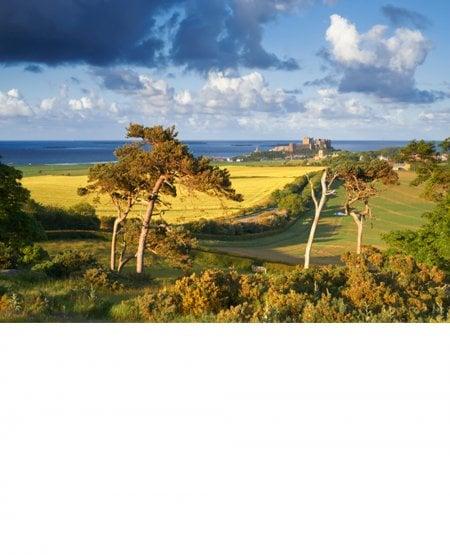 Bamburgh Castle, Farne Islands beyond