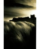 Bamburgh Castle with Marram grass