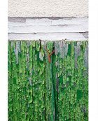 Red Hair-band on Green Shutters