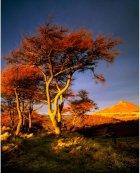 Stormlight on Cliff Ridge  North York Moors
