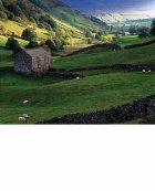 Upper Swaledale, autumn  Yorkshire Dales