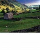 Upper Swaledale, autumn  Yorkshire Dales