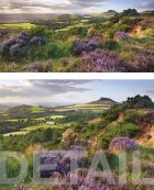 Summer afternoon, Gribdale  North York Moors