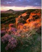 Moorland edge, late summer  North York Moors