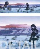 Easterside Hill, Bilsdale, winter dawn  North York Moors