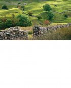 Small hills and walls, Swaledale