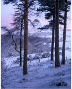 Mid Winter, Roseberry Topping