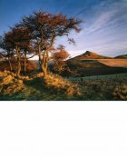 Roseberry Topping, Autumn