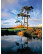 Aireyholme Farm pond