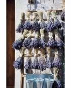 Lavender on weathered door