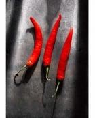 Red Chilis on Cumberland Slate
