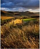 Shotton Hill, Northumberland National Park