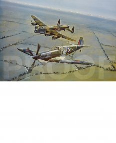 The Shepherd - Spitfire Mk9 Escorts a Crippled Lancaster Bomber