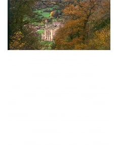 Rievaulx Abbey autumn