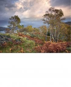 Shepherds Crag, autumn, Lake District