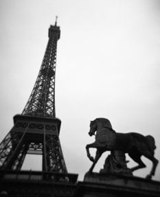 Eiffel Tower with Horse. Paris, France