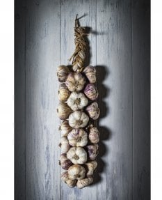Garlic Rope on Provencal Door
