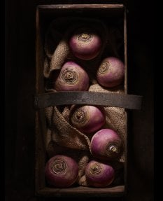 Dark Box- White Turnips