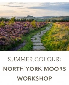 Summer Colour: North York Moors Photographic Workshop