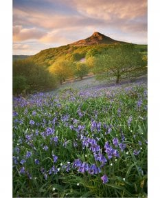 Following rain, Roseberry Topping
