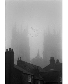 York Minster with 22 birds and mist
